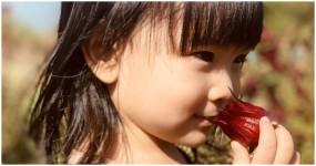 桃園隨時都有不同的驚喜,放假來一趟尋找秋天的紅寶石之旅,美不勝收之餘也滿足口中味蕾,讓我們農來桃園尋寶去。
