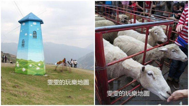 南投縣仁愛鄉 清境農場青青草原43