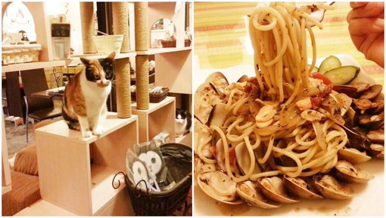 新北市三芝區 Coffee Door & Meo-woo 貓雜貨咖啡館61
