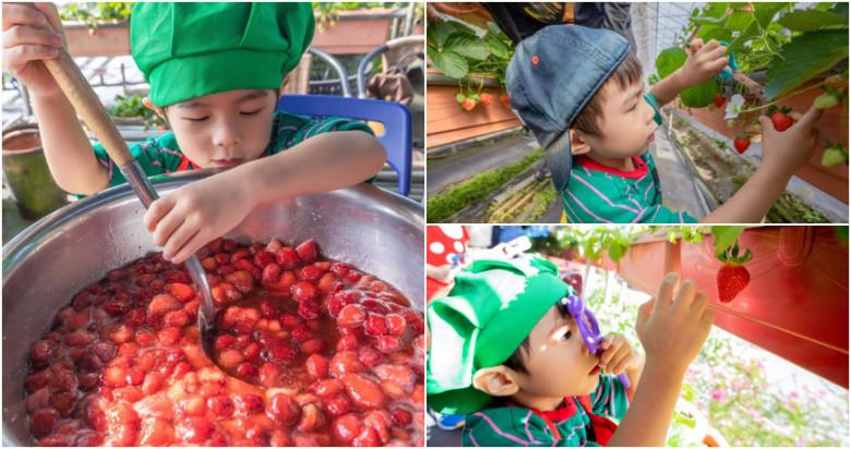 台北市內湖區 內湖草莓園34