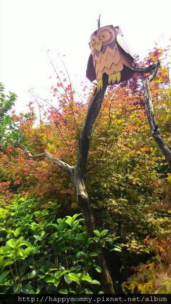 2015.06.14 陽明山竹子湖大梯田賞繡球花 (56).jpg