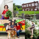 美食/餐廳/中式料理/客家菜桃盧坑休閒農業園區