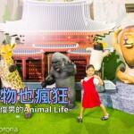 休閒旅遊/景點/展覽館動物也瘋狂-朝隈俊男的ANIMAL LIFE