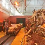 休閒旅遊/景點/展覽館侏儸紀恐龍樂園-台中