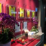 美食/餐廳/中式料理/麵食點心炊牛王牛肉麵專賣店(關東店)