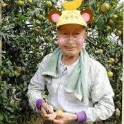 阿公的珍珠柑-羅阿公珍珠柑-中寮南投特產