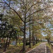 200112台中-外埔國道3號橋下金仔坑公園-6D