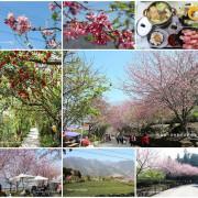 『南投。2020草坪頭櫻花季』~停車資訊/冠鈺園小火鍋