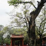 [漫步中西區]台南 孔廟~再見了禮門