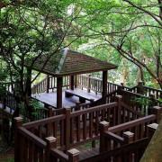 木棧道之美 新北泰山辭修公園