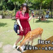 宜蘭景點。斑比山丘  在台灣也能與小鹿零距離互動