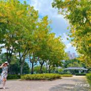 台中南區 || 半平厝公園(原崇德公園)台中阿勃勒花季6月黃金雨,賞花野餐好風景