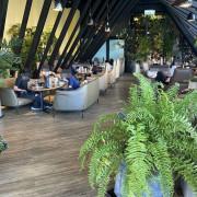 新北新莊-兜•咖啡(D'or cafe) 森林系咖啡廳、不限時、一個人的旅行
