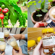【屏東咖啡】靜星咖啡園 無農藥種植 在地咖啡小農 曬豆/洗豆/烘焙 採全預約制