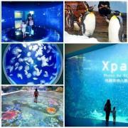 【桃園青埔】Xpark八景島水族館.必逛重點、門票、交通、停車資訊!
