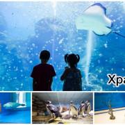 【桃園親子景點】Xpark水族館~現場購票、門票預購|交通資訊,日本橫濱八景島水族館台來打造台灣首座新都會型水生公園、企鵝咖啡廳
