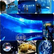 桃園XPARK首座海外水族館!「X Park」7大亮點整理,開幕日、訂票資訊、票價、營業時間、夜宿水族館!