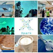 桃園青埔景點【Xpark】來自日本都會型水族館