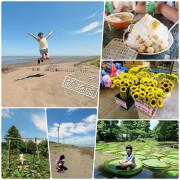 桃園景點⎮桃園一日遊推薦⎮向日葵迷宫、大王蓮體驗X水上蓮花鞦韆、IG打卡迷你版撒哈拉!