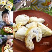 【異國零嘴】五甲木農產 泰國冷凍乾燥榴槤乾 大小朋友都愛吃的濃郁滋味