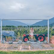【台東旅遊/景點】阿裕紅龍果園 無毒有機栽種,獻上最自然甘美的火龍果 農遊採果樂+果醬DIY超趣味 台東農遊趣必推景點