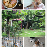 高雄美食-自在園庭園咖啡 烏龜丨鴨子丨小老鼠 彷彿來到迷你景觀咖啡動物園