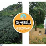 【遊記】嘉義梅山_梨子腳山@披上茶樹綠衣裳 充滿小清新的NO.57