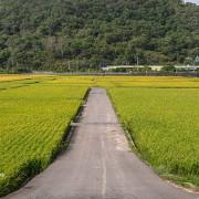 201024苗栗-鯉魚潭村
