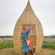 2020 桃園花彩節-楊梅場-「花香蜜意 楊梅好哞」