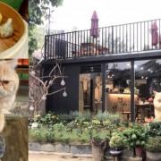 〖游家肥貓 〗新亮點!加菲貓寵物餐廳.126公分超萌加菲貓.荒廢舊屋改建的寵物餐廳.低消飲品只要50元