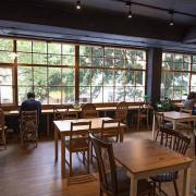 窗邊 Window Cafe - 整面行道樹的綠意盎然,還不快上樓喝杯咖啡?