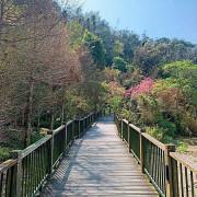 漫步連結伊達邵碼頭與纜車站的親水步道.輕鬆享受日月潭的優閒恬靜.  道路平坦好走,沿途還可以聞到陣陣的桂花香與觀賞美麗的櫻花  親子寵物友善 不限大小最少需要牽繩  銀髮友善