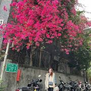 【台北赤峰街/季節限定】限時滿開的天然花藝,經過赤峰街快收藏起來。