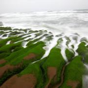 [新北石門]季節限定!春天才會出現的天然綠地毯!石門老梅綠石槽 - 大手牽小手。玩樂趣
