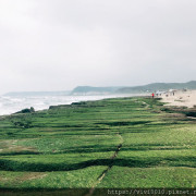 圓圓家出去玩-《新北景點》老梅綠地毯季節限定特色景觀,北海岸一日輕鬆遊~