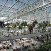 宜蘭|香草菲菲在玻璃花園浪漫用餐的體驗/吃buffet/賞花草