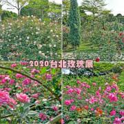 【台北景點】圓山捷運站~2020臺北玫瑰展,花博公園新生園區浪漫登場,培育至少700品種、2800餘株玫瑰,讓你相機手機拍好拍滿