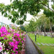 【台北-大安區】2019臺大杜鵑花節3/1-3/31