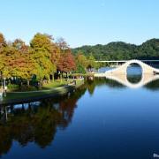大湖公園落羽松~錦帶橋與落羽松在藍天襯托下超殺記憶卡