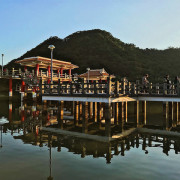 【內湖】大湖公園|落羽松、野餐、釣魚好去處*