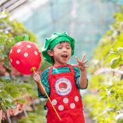 [台北景點]內湖草莓園碧山路49號,小小草莓達人×採草莓×草莓果醬DIY×雞蛋仔×草莓氣球