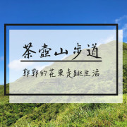 【新北遊記】無耳茶壺山步道~勸濟寺旁能俯瞰陰陽海的登山步道