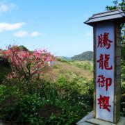 春節連假走春賞櫻趣:杏花林+騰龍御櫻