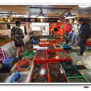 新北市-石門區-富基漁港-蟹之鄉+兄弟代客料理+石門洞