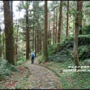桃園。東眼山自導式步道挑戰小百岳