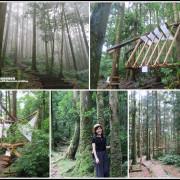 東眼山打卡新亮點森林裡的木構裝置藝術|漫步杉林間享受芬多精|避暑療癒系步道