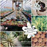 |新竹HSINCHU 福祥仙人掌園區FuHsiang Cactus|禾乃氏-擁有任意門的日子:多肉迷的福音,療癒仙人掌園大開眼界