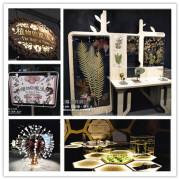 【台中 展覽】科博館親子一日遊I 。揭開植物界生存演化中驚人的演繹魔法-植物的魔法特展