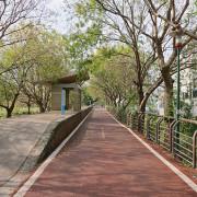 台中行-東豐鐵馬道-美麗的梅花與蜂的故鄉