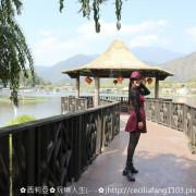 【南投。埔里鎮】來吧!就讓咱們跟著進擊的鴨子一起悠遊在翠綠湖中央吧!~埔里鯉魚潭風景區
